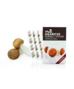 Agaricus ABM Extrakt + Pulver in Kapselform 120 Kapseln