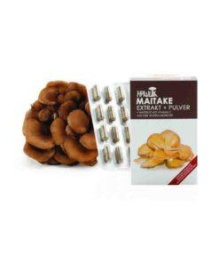 Maitake Extrakt + Pulver in Kapselform 120 Kapseln