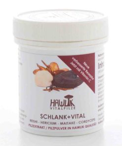 Schlank + Vital Vitalpilzmischung in Kapselform 90 Kapseln