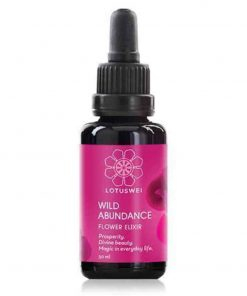 Wild Abundance Elixir Blütenessenz Blütenessenz 30ml